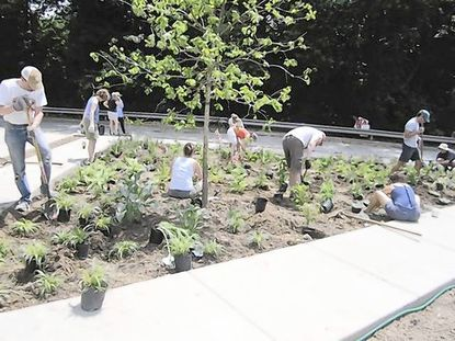Wyman Park residents plant a community garden in a grassy triangle at 33rd Street and Remington Avenue. The plot was recently restored by the city, more than three years being torn down because of a federally-mandated sewer project.