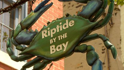 Riptide by the Bay will head to auction after almost a decade in business.