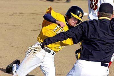 "6 34/"" Bois De Baseball Maple wood Game Ready Merce"