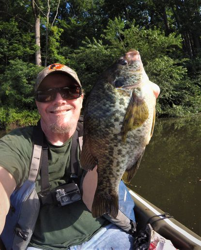 Big, skittish red ear sunfish can be easy targets when pursued with a kayak approach.