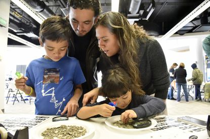 """Baltimore, Md--10/31/15--Juan and Nancy Bonilla, Overlea, and their children, Andres, 6, and Ibana, 3, look for marine fossils that are over 20 million years old at the Maryland Science Center table. They attached the fossils to cards and were able to keep them. The Geological Society of America hosts """"Baltimore Rocks! Geoscience Open House"""" at the Columbus Center. The event gets children to experience hands on science activities and demonstrations."""