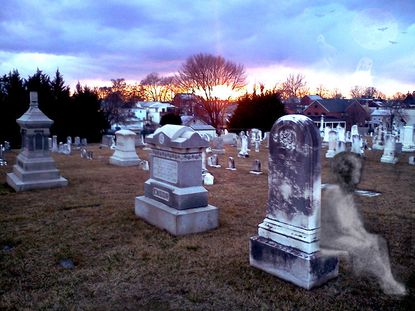 A snallygaster relaxes in a moment of contemplation about whether or not there are any ghosts at the Westminster Cemetery.