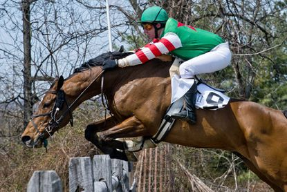 Nat Grew, with rider Jody Petty up, en route to winning the 104th running of the My Lady's Manor Steeplechase Race in Monkton, April 12, 2014.