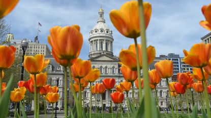 Baltimore City Councilman Ryan Dorsey plans to introduce Monday three bills aimed at ensuring an ethical city government — including measures to ramp up financial oversight and disclosure requirements and protect whistleblowers.