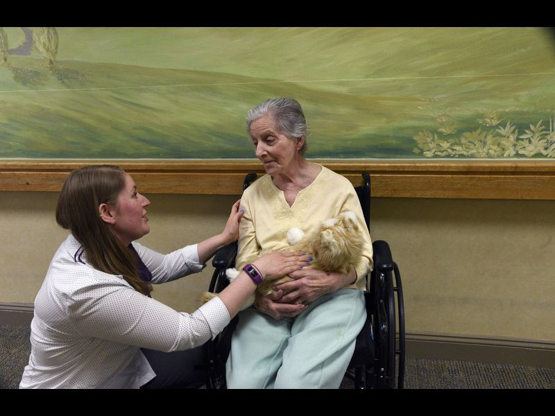 Animatronic pets at retirement homes a sign of how robots